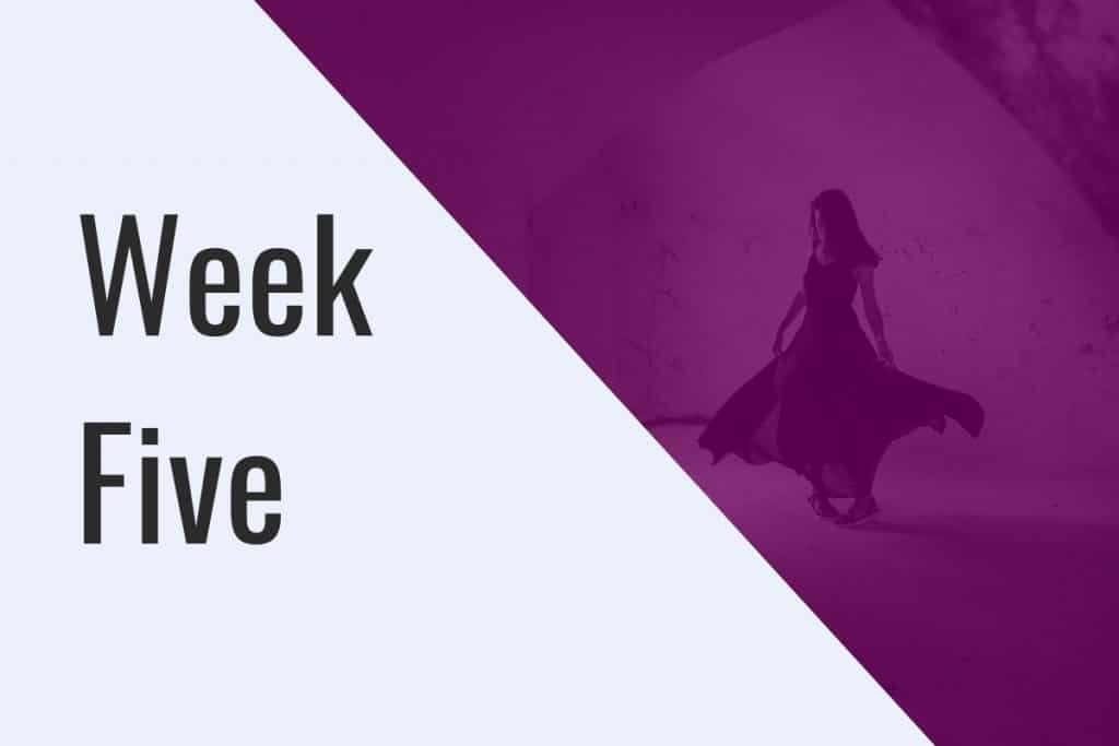 Week Five Student Mentoring Programme